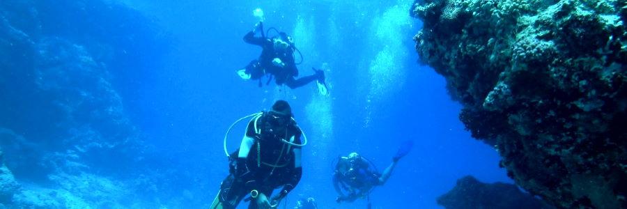 Plongée sous-marine à La Réunion